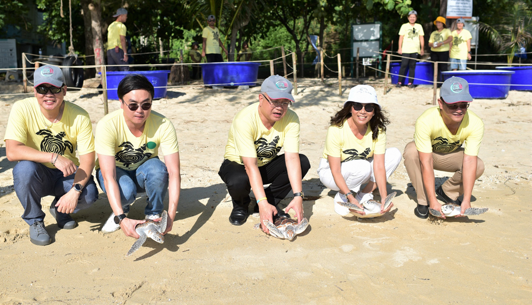 25 Years of Wildlife Conservation Marked at Laguna Phuket Sea Turtle Conservation 2019